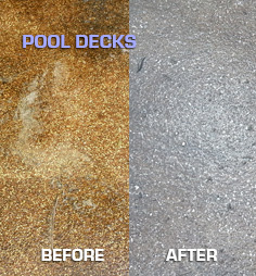 Pool Deck before & after Michael Panebianco Pressure Cleaning, LLC
