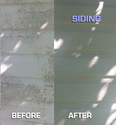 Siding Before & After Michael Panebianco Pressure Cleaning, LLC